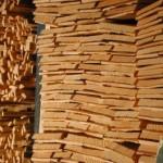 Foto von Holzschindeln